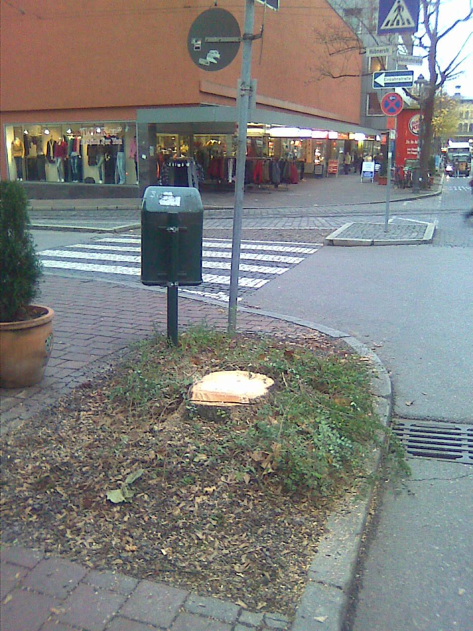 Baumstumpf in der Bahnhofstraße