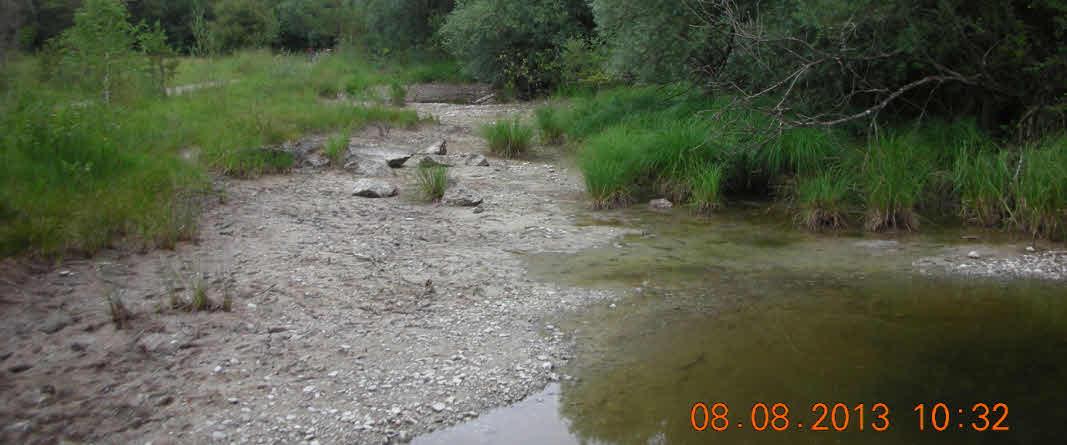 Fast leerer Grundwassertümpel an der Schießplatzheide
