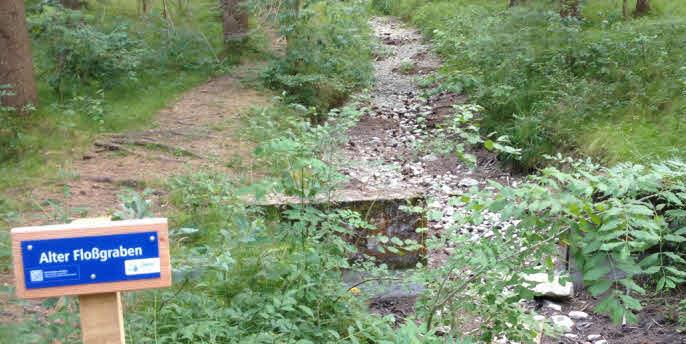 Trockengefallener alter Floßgraben