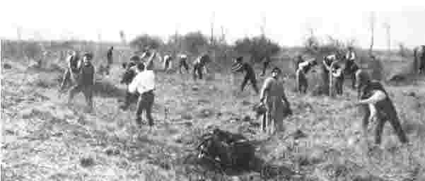 Genossenschaftliche Bauvorbereitung in der Firnhaberau um1920